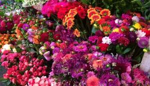 bloemkes